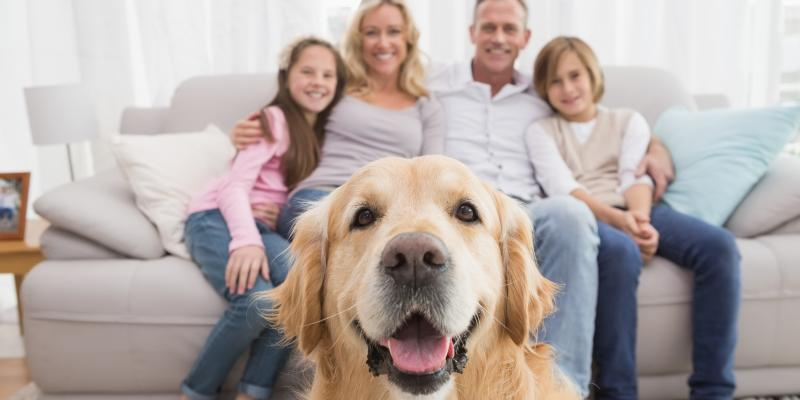 family-and-puppy.jpg
